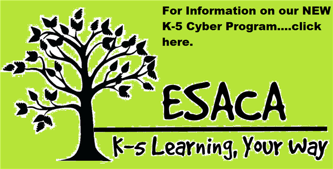 ESASD Offering Cyber for K-5 Students in 2019 School year